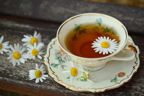 Az 5 legegészségesebb szálas tea